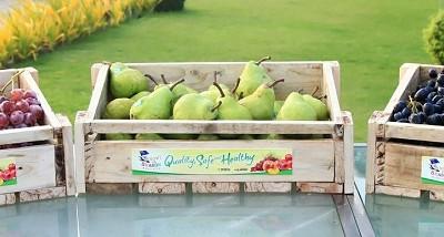 australianfruits