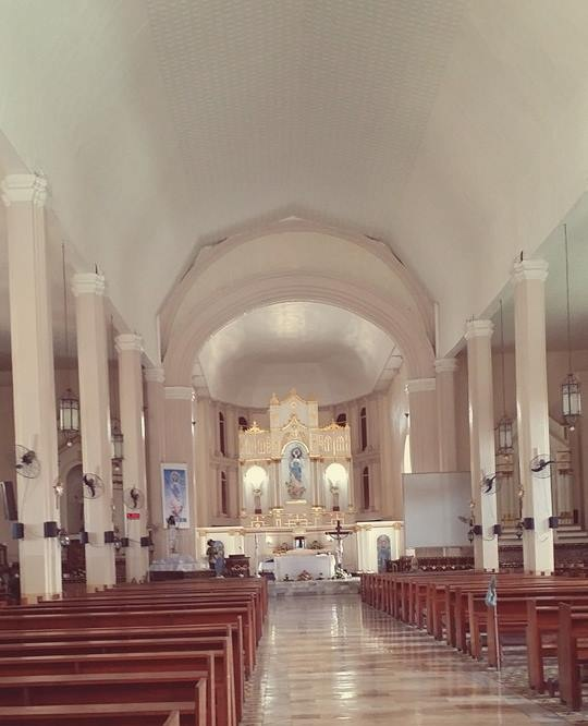 immaculate conception parish2